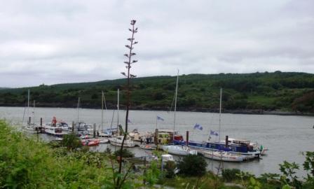 HBA make it to the high seas, Foyne, Shannon Estuary 23.07.08