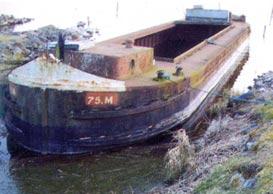 75M 2006