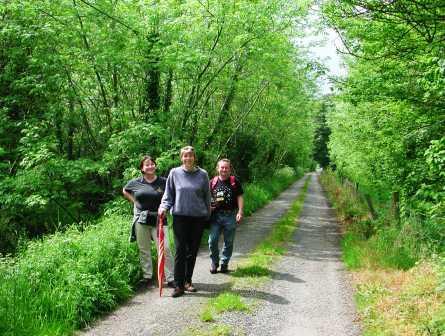Mandy Henry, Judy Becker, Victor Henry - Walk to Kilbeggan 2002