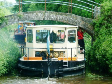 W11 68M at accommodation bridge below Leighlinbridge 6.jpg