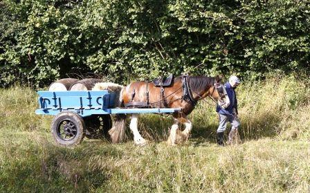 Ned & Casks along the towpath - photo from IWS