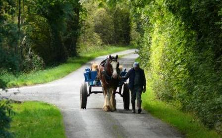 Journey from Kilbeggan to Ballycommon - photo by Michael Slevin