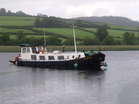 Paradijsvogel Lough Derg Jul 2007